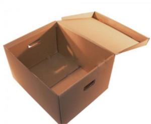 Cutii pentru arhivare 01