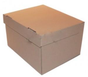 Cutii pentru arhivare 02
